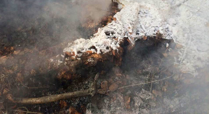 How to Manage Holdover Fires